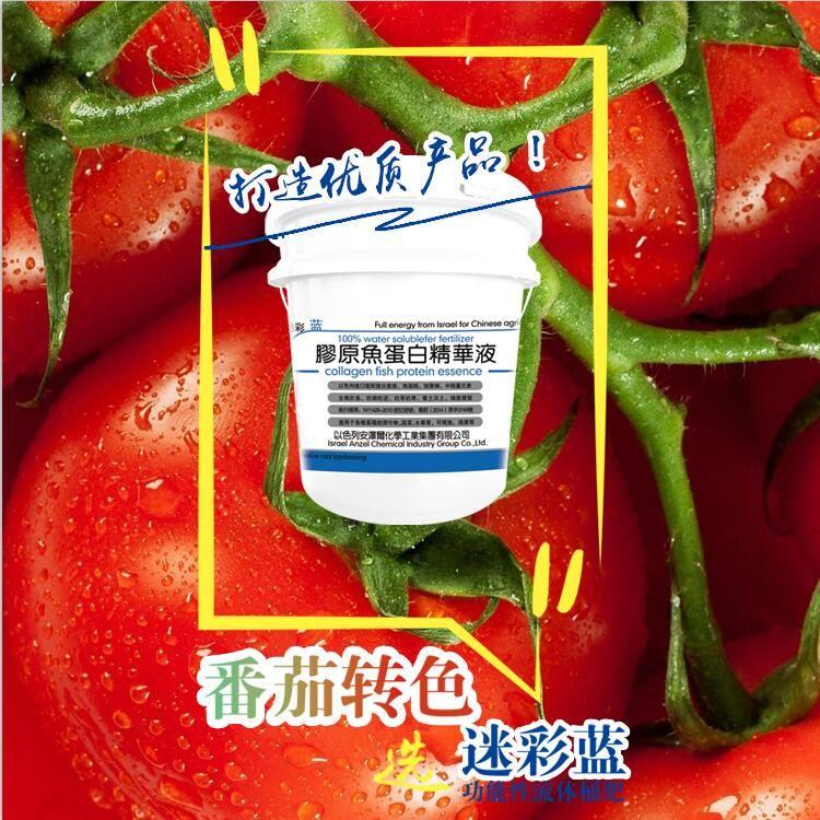 功能性液体肥--番茄